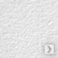 Потолочная панель Оазис Армстронг