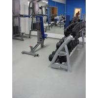 Специальное покрытие для тренажерного зала СОЛД Спорт