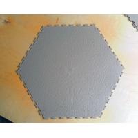 Sensor Tech SOTA Sensor