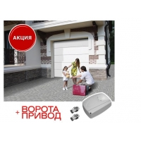 Акция на комплекты гаражных секционных ворот с электроприводом DoorHan