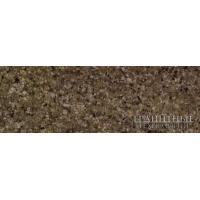 Плитка облицовочная - Гранит Куртинский  полированная 300х600х20 мм