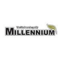 Ламинат Millennium strong 33 класс