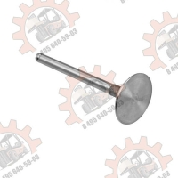Впускной клапан к двигателю Балканкар Д3900 (31431641)