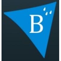 Пленка Brane B (Брейн), пароизоляция, подкровельная пленка