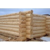 Срубы для дома и бани из зимнего леса на заказ