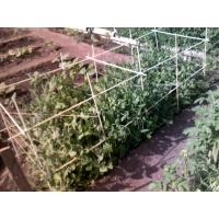 Изделия из стеклопластика для сада, огорода и сельского хозяйств