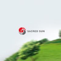 """Sacred Sun"" - аккумуляторы от производителя"