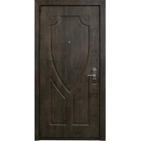 Входная металлическая дверь Аргус Витязь