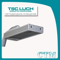 Уличный светодиодный светильник CTM DSO19-2