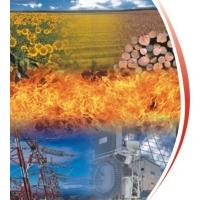 Котлы на биомассе. Bono Energia