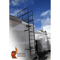 Лестница пожарная металлическая вертикальная П1-1