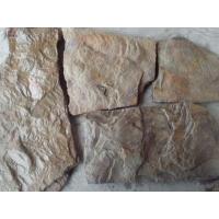 Камень Дракон природный натуральный песчаник пластушка