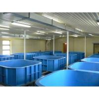 Бассейны для разведения рыбы из полипропилена