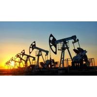 Реагенты для добычи нефти SNF