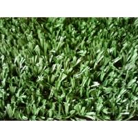 Искусственная трава  20