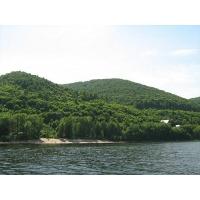 Продается летний дом на берегу р. Волги  45 кв.м.(турбаза Дружба