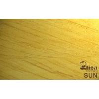 Гибкий камень Gliga Stone SUN (Солнце)