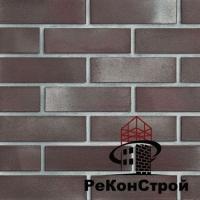 """Кирпич клинкерный Roben, """"брусок"""" Adelajda гладкий"""