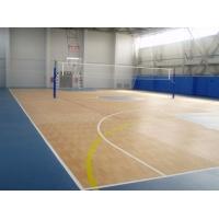 Спортивный линолеум Лентекс Lentex Sport