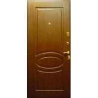 Дверь_металлическая_5