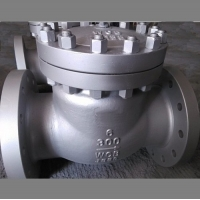Carbon Steel Flanged Check Valve