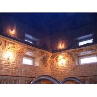 Лаковый белый, цветной натяжной потолок (Бельгия)