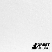 Аляска потолочная декоративная панель ISOTEX