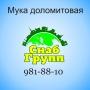 Доломитовая мука(минеральный порошок) ООО СнабГрупп  Санкт-Петербург