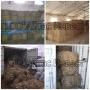 Пакля строительная, льняная, в тюках   Казахстан