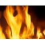 Огнебиозащита древесины  КСД Казахстан