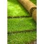Качественный рулонный газон   Тула