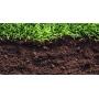 плодородная почва  земля для сада Калининград