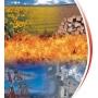 Котлы на биомассе. Bono Energia  Украина