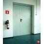 Дверь противопожарная металлическая EI-60   Казань