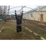 Теплица из оцинкованной трубы 20*20!!! Распродажа 3*6   Новосибирск
