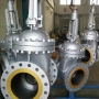 Carbon Steel Gate Valves   Китай
