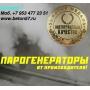 Парогенераторы для пропарочных камер   Воронеж