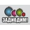 ООО Задиодим Владимир