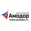 ГК Амодор Ижевск