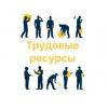 Трудовые ресурсы Екатеринбург