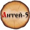 ООО ANTEI-5