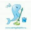 ООО Заботливый дельфинчик