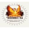 Феникс 54